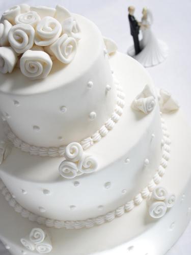 organisation mariage nord