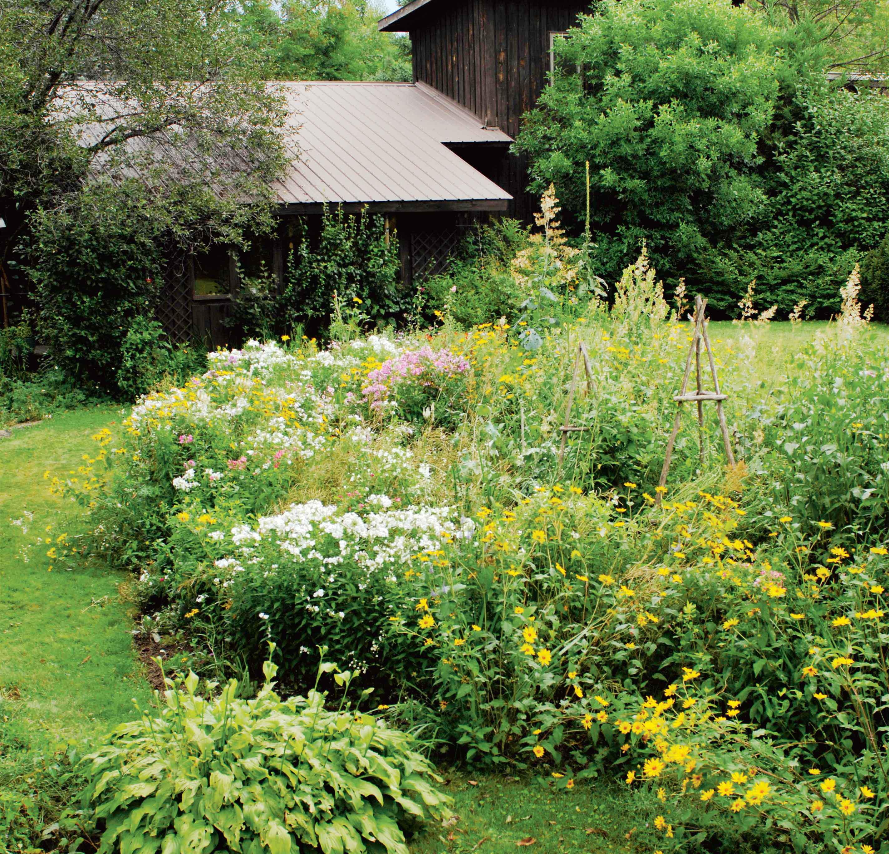 Six tips on how to create a wild natural garden Chatelaine