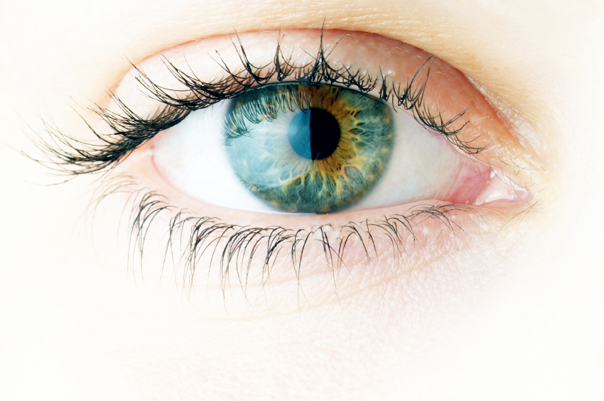 Image result for see eyes