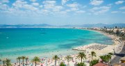 Chat Terra Sala Mallorca