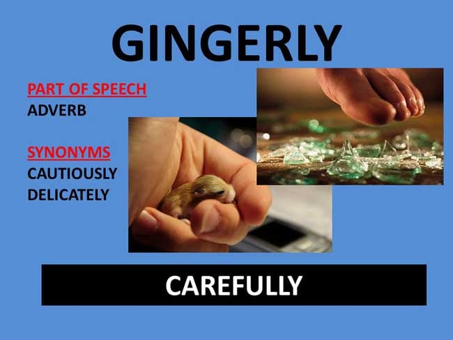 Gingerly Meaning Gingerly Etymology Gingerly Synonyms definition Chatsifieds