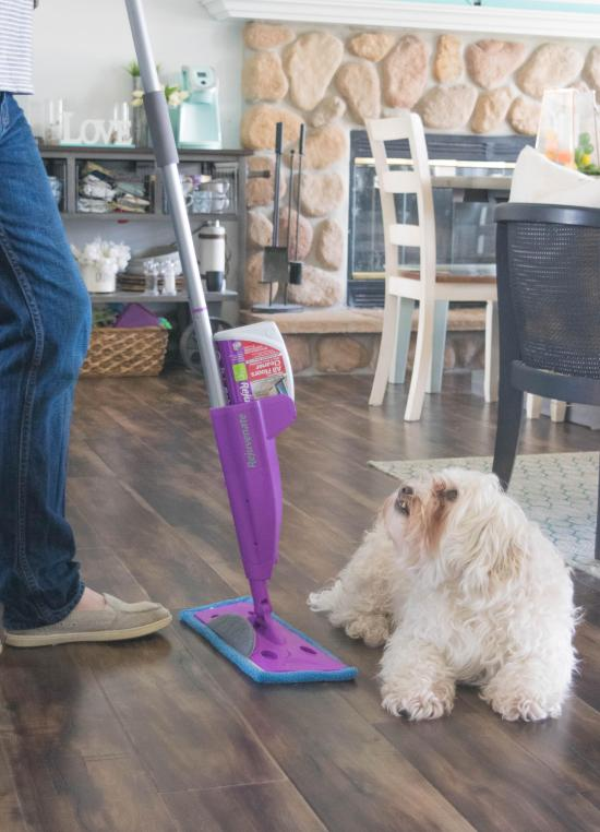 mapping the floor and a dog | Chattanooga Home Inspector | floor cleaning Chattanooga