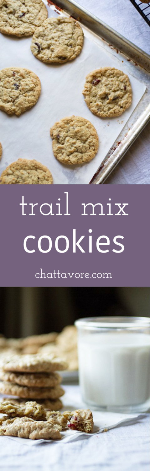 My trail mix cookies contain all kinds of good stuff-oats, chocolate chips, sunflower seeds, nuts, cranberries, and coconut. They're fantastic! | recipe from Chattavore.com