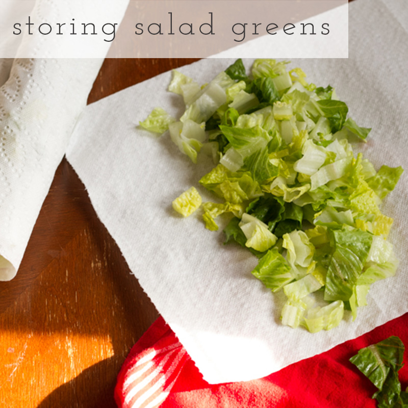Food waste is a big problem for your budget, your trash, and your fridge, so here's a tutorial for storing salad greens and cutting down on that waste! | tutorial from Chattavore.com