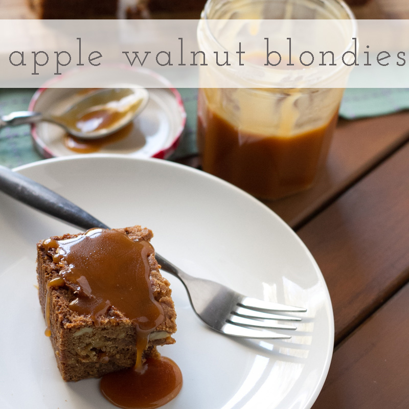 Apple blondies with walnuts and whiskey caramel are (1) rich; (2) decadent; (3) perfect for Fall; and (4) made in one bowl. ONE BOWL! | recipe from Chattavore.com