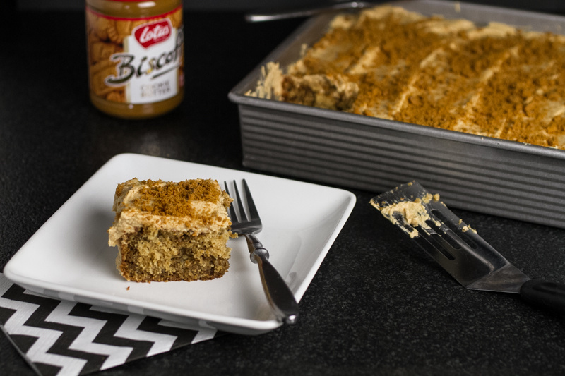 This Biscoff cake with cookie butter frosting is an easy, moist, and fabulously tasty dessert! | recipe from chattavore.com