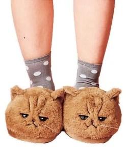 chausson chat regard de tueur