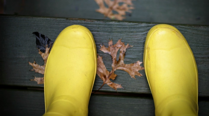 Yellow raise boots on a wet wooden surface covered in leaves