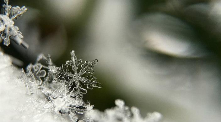 Closeup of snowflakes