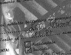 Did Primo Levi really kill himself?