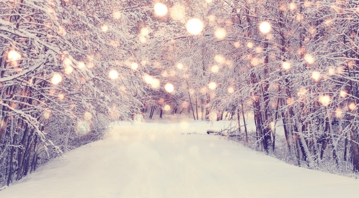 Snow covered road surrounded by trees -- and white lights in the foreground