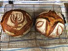 Two Loaves for Shavuous - 93% Hydration Home Milled White Wheat and Kamut Khorasan