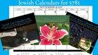 Now on Kickstarter: Jews in Space Calendar / Jewish Cats Calendar / Jewish Garden Calendar. Because 5781 is closer than ever.