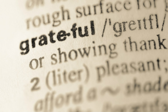 Dictionary entry for grateful