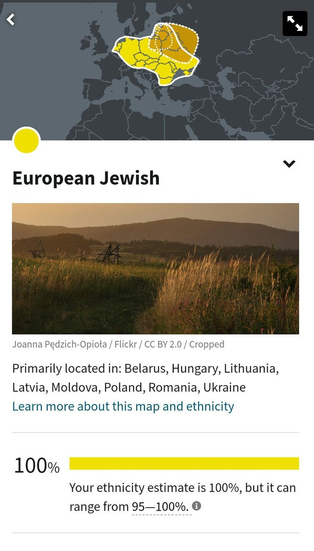 So a few weeks ago, I got my ancestry DNA results back. My parents are both Jewish as is the vast majority of my family tree. I deff wasn't shocked but wow, 100%?! Talk about deep roots!
