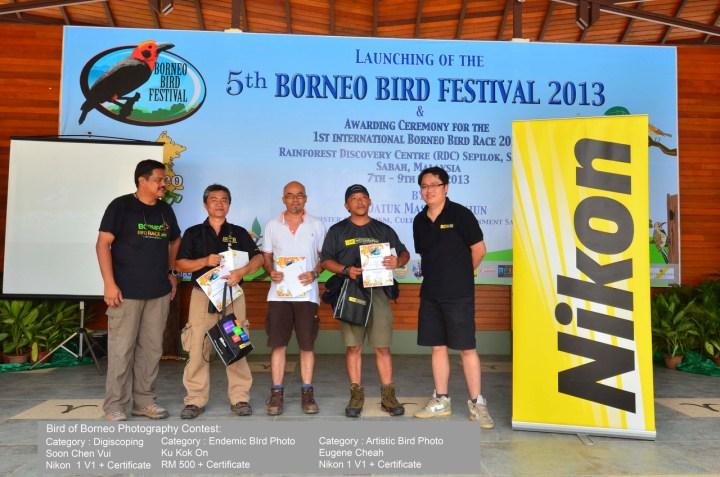 Winning Bird photography contest