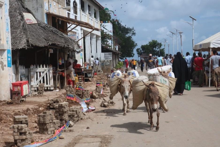 a street in Lamu
