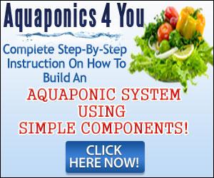 how-to aquaponics