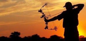 bow_hunting