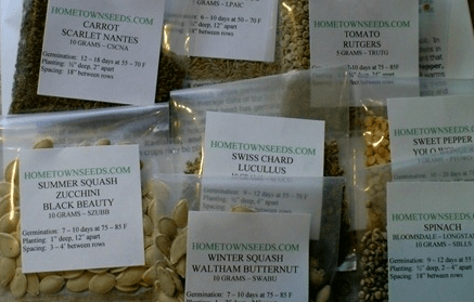 Cheap vegetable seeds