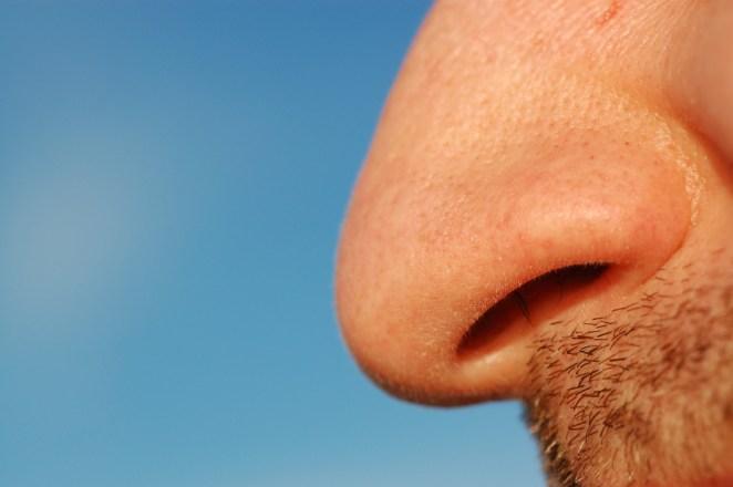 Close-up of a man's nose