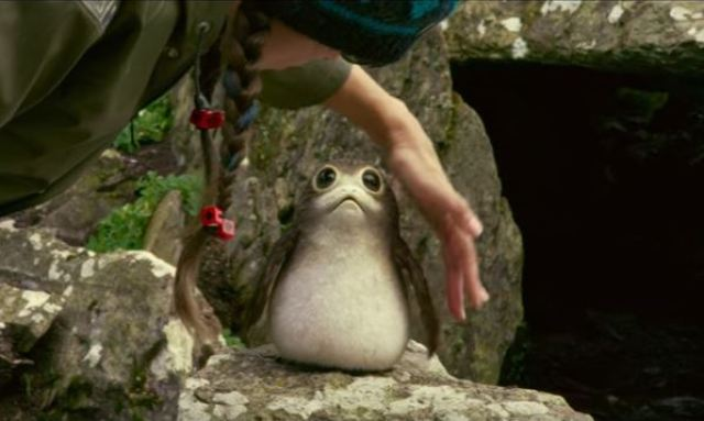 A porg, as seen in the sizzle reel for 'Star Wars: The Last Jedi'
