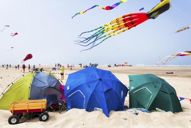 Annual kite festival in Linclon City on the Oregon Coast