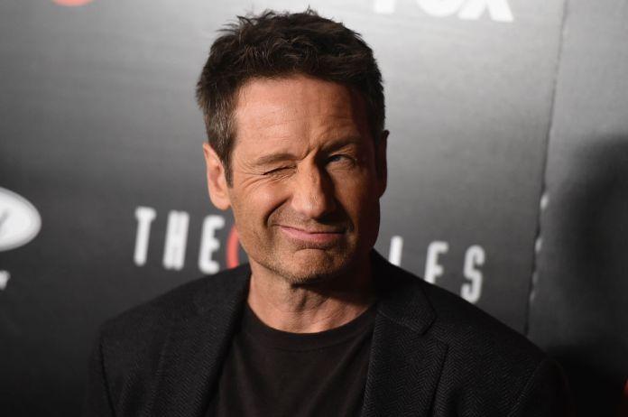 David Duchovny AKA Agent Fox Mulder on The X-Files
