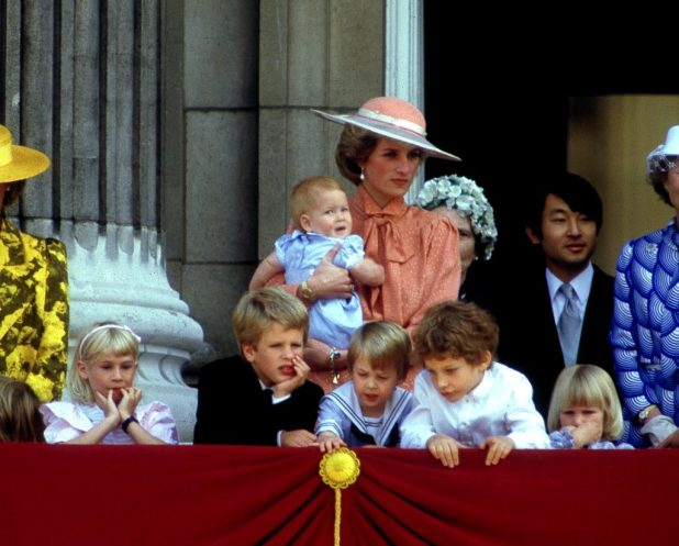 Princess Diana held Prince Harry along with Lady Davina Windsor, Peter Phillips, Prince William, Lord Frederick Windsor and Lady Rose Windsor.