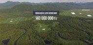 Сайт «НаДальнийВосток.РФ» оформляет заявки на получение гектара в ДВФО