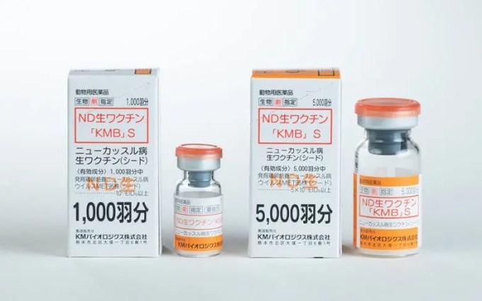 ニューカッスル病ワクチン接種してますか?