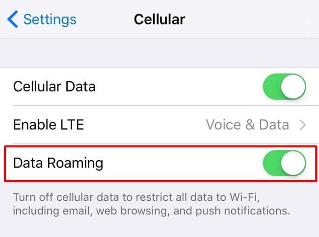 Data Roaming setting for Apple's iPhone