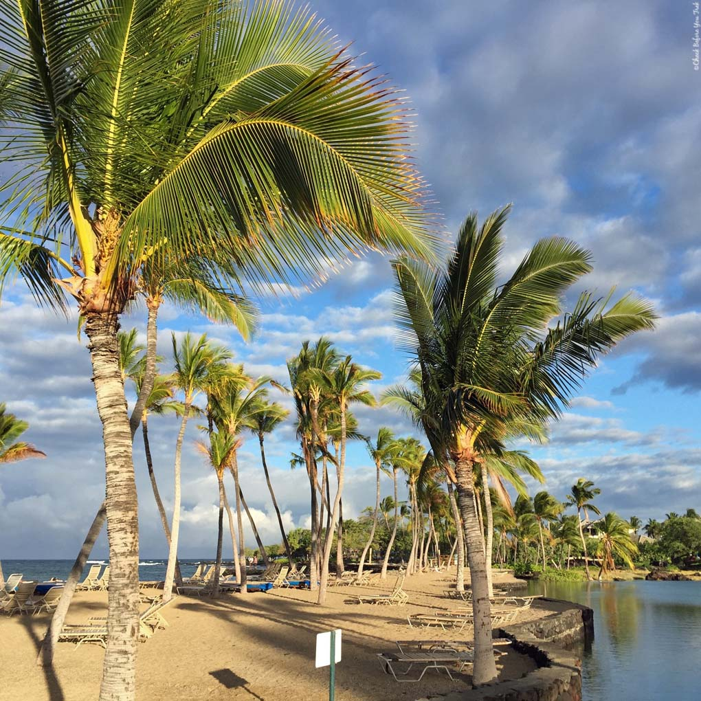 Big Island Beaches: Check Before You Trek