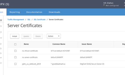How to Install IIS SSL Certificate for Citrix NetScaler #Citrix #IIS #SSL #Certificate #NetScaler #Digicert #mvphour