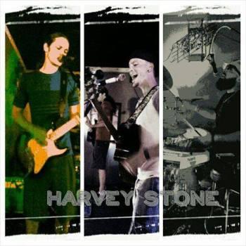 harvey-stone