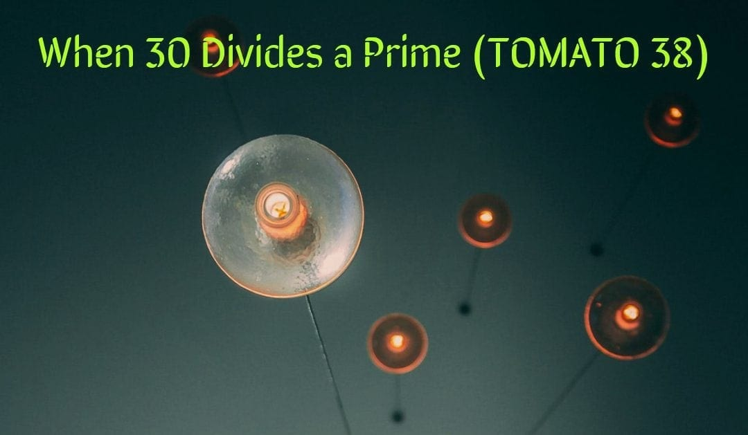 Test of Mathematics Solution Subjective 38 – When 30 divides a prime