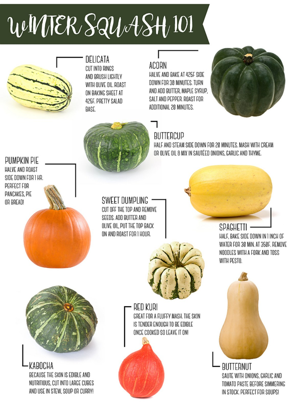 Winter Squash Guide| Chef & Shower Blog | Chef & Shower | Kitchen and bath blog