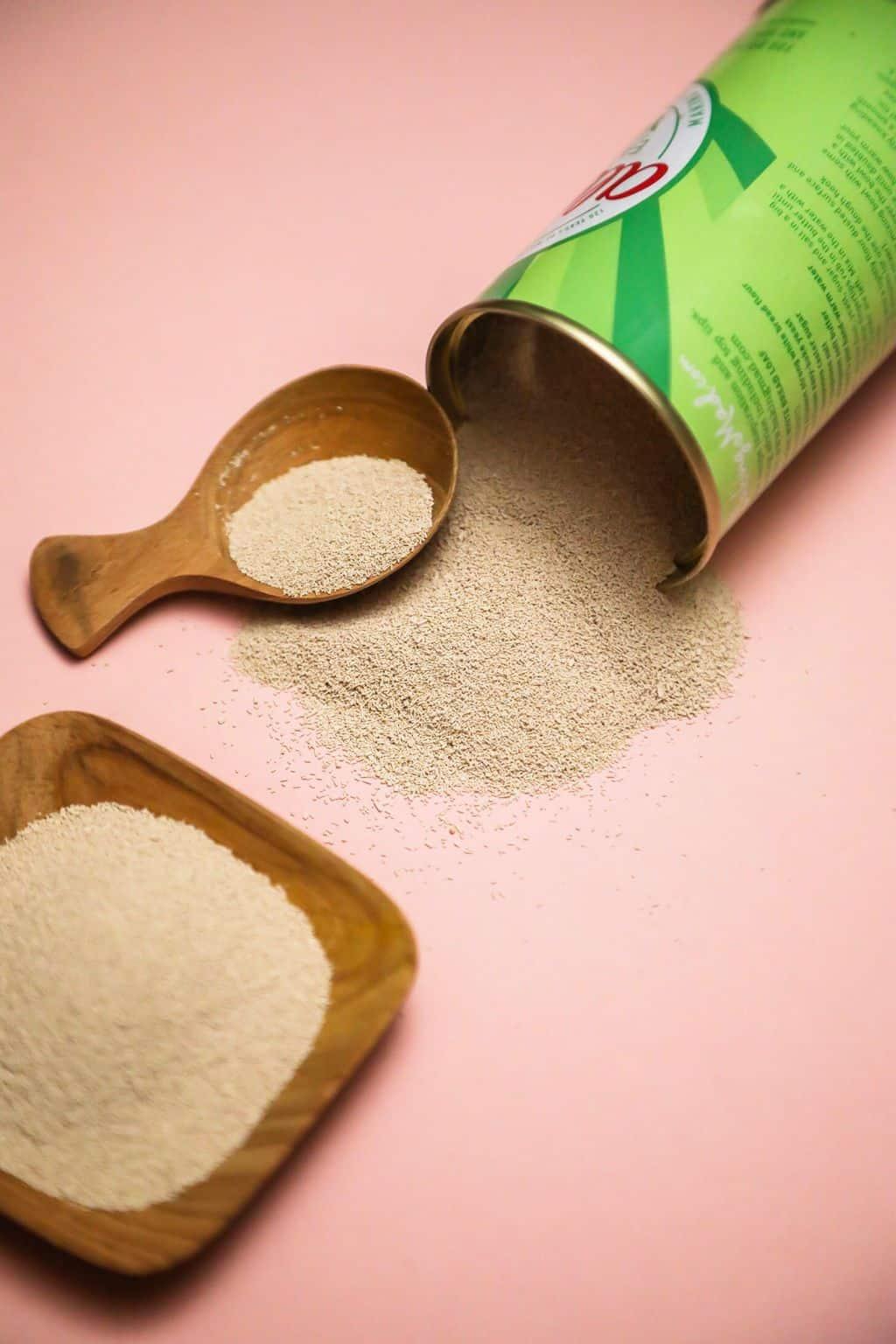 Active Dry Yeast vs Instant