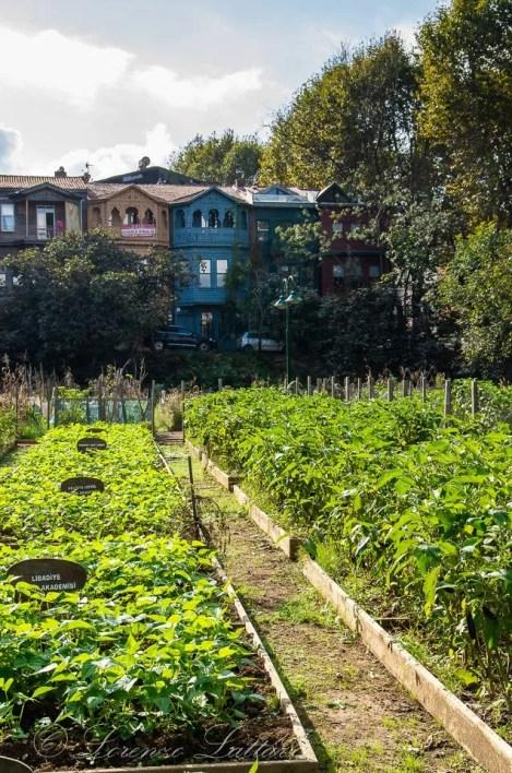 giardi botanico di uskudar a istanbul