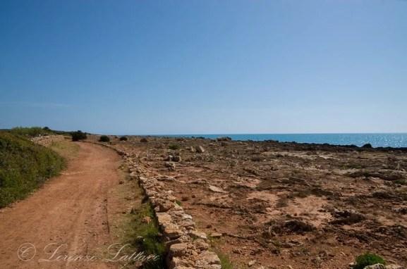 sentiero nella riserva di vendicari in sicilia