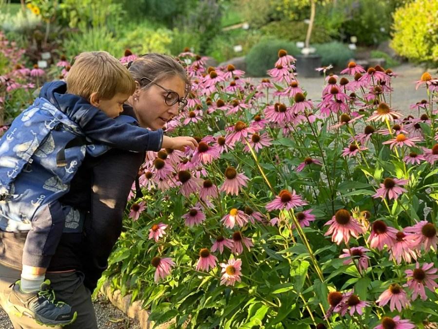 Che il viaggio abbia inizio, fiori a Vigeland Park 2