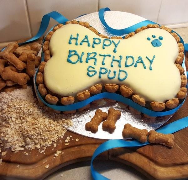 Chocolate Cake Happy Birthday Dog