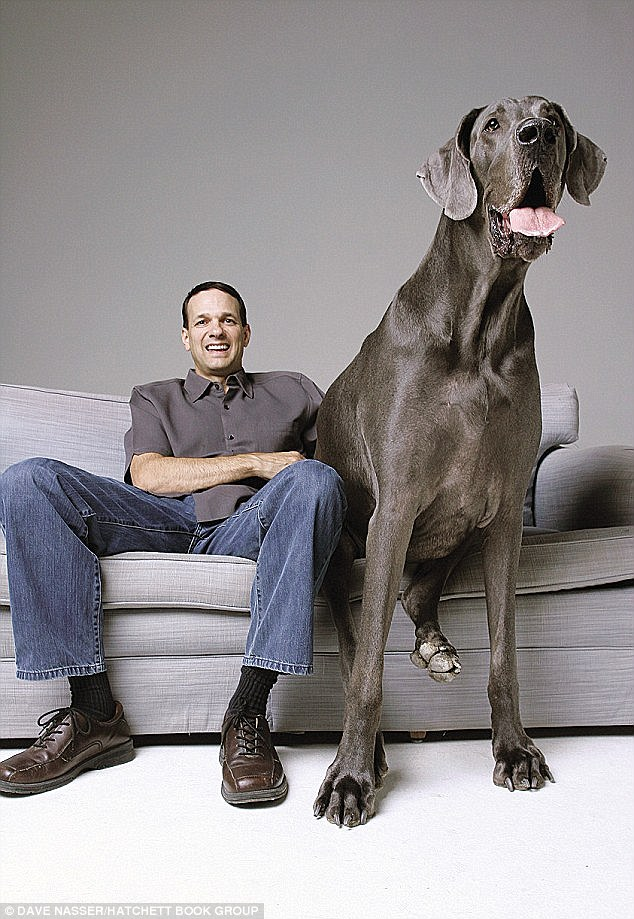 Worlds Tallest Dog Giant George Sadly Passes Away