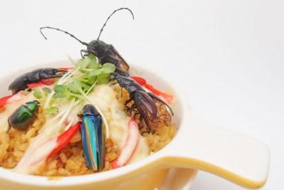 Paella-with-Japanese-beetles.jpg