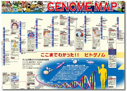 ikka_genome.jpg