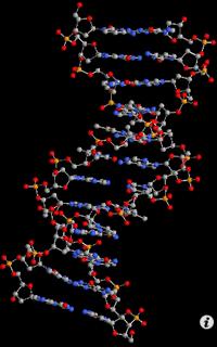 molecules_iPod2.png