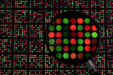 DNA_microarray_1.jpg