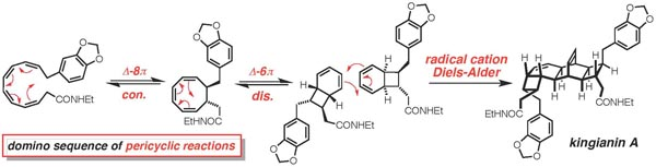 Lawrence group reaction mechanism