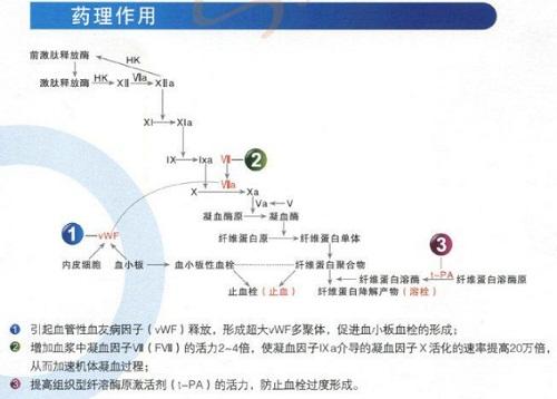 醋酸去氨加壓素 | 16789-98-3