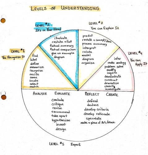 Levels of Understanding